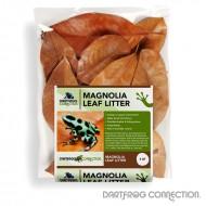 DFC Magnolia Leaf Litter 4 qt