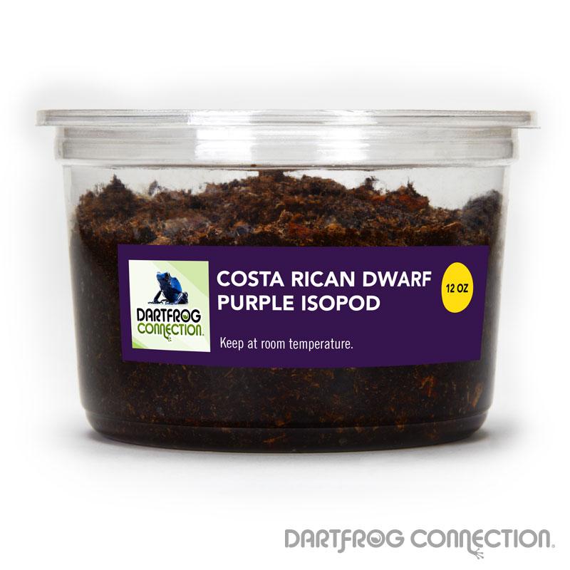 Costa Rican Dwarf Purple Isopods 12 oz