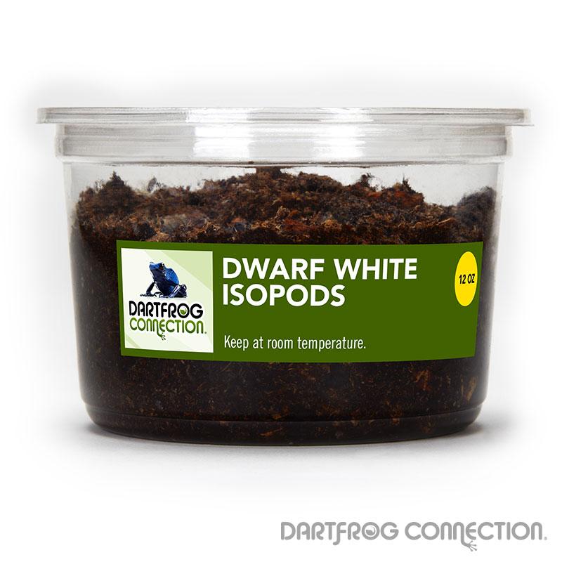 Dwarf White Isopods 12 oz
