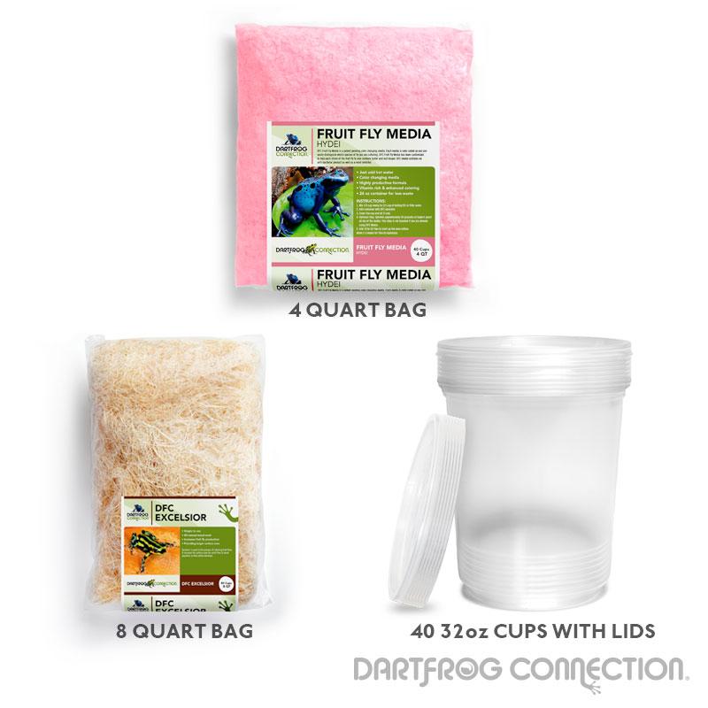 Hydei Fruit Fly Kit- 40 Pack