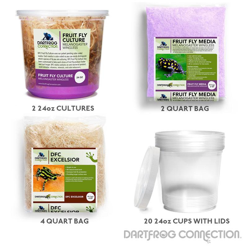 Wingless Fruit Fly Kit- 20 Pack (24oz)